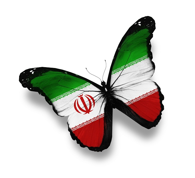 Iranian flag butterfly, isolated on white